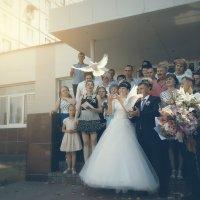 Голуби :: Юлиана Филипцева