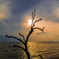Закат на островах :: Дмитрий Малышев
