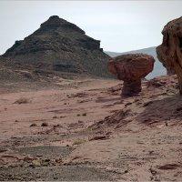 """Национальный парк """"Тимна"""", Израиль :: Lmark"""