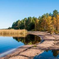Осенний пляж :: Яна Старковская