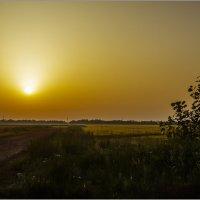 Дорога в рассвет... :: алексей афанасьев