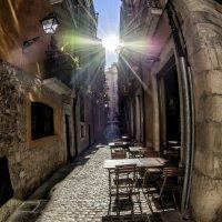 sunlight :: Dmitry Ozersky