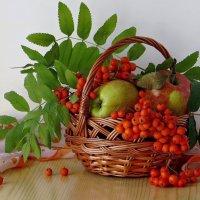 Моя душа настроена на осень... :: Татьяна Смоляниченко