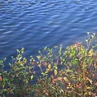 Волны на озере :: Елена Семигина
