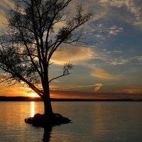 Осеннее одиночество :: галина северинова