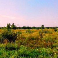 Прикосновение осени :: Наталия Каминская