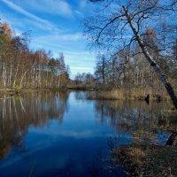 Осенний сюжет :: Валерий Толмачев