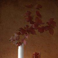 Натюрморт в красно-белых тонах :: Natalia Furina