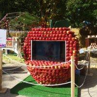 Яблочный телевизор. :: Чария Зоя