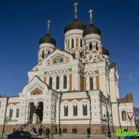 Таллин, Старый город, Александро - Невский Собор :: Александр Педаев
