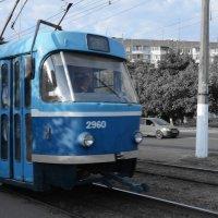трамвай транспорт :: Александр