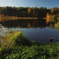 Вот и осень золотая... :: Александр Попов