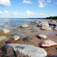 Финский залив :: Елена Павлова (Смолова)