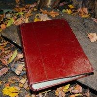бросили книгу одну, заменили на электронные :: Света Кондрашова