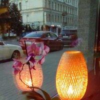 Интерьер ветрины кафе с вазой. :: Светлана Калмыкова