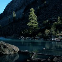 ледяной свет :: liudmila drake