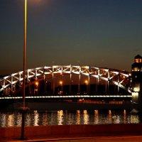Пролет моста Петра Великого. Питер :: Наталья