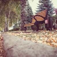 Скамейка на аллее :: Вячеслав Баширов