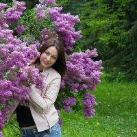 подарок весны :: Виктория Левина