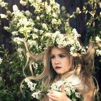 кукла :: Kate Vasileva