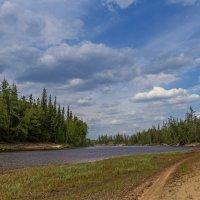 Прогулка вдоль реки :: Дмитрий Сиялов