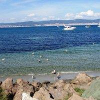 Болгария. Солнечный берег. :: ВСЕ В ЭТОЙ ЖИЗНИ...ТАК НЕ ПРОСТО.... ALZHIS
