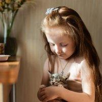 Два котенка :: Юлия Полуэктова