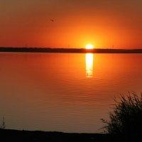 Закат на солёном озере Мармышанское. :: Олег Афанасьевич Сергеев