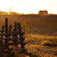 Осенние лучи солнца... :: Диана
