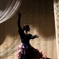 Балет, балет, балет :: Анатолий Шулков