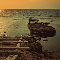 Морское наше побережье :: Ольга Мальцева