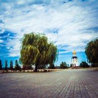 Красота вечна (Волгоград) :: Valeri Murtova