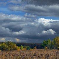 Земли и неба дождевые споры... :: Лесо-Вед (Баранов)