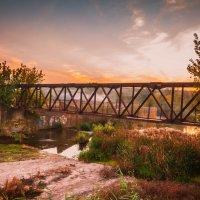 мост :: Алина Гриб