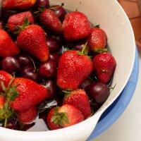 strawberry :: Екатерина Белка