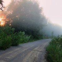 Утро.Туман :: Павлова Татьяна Павлова
