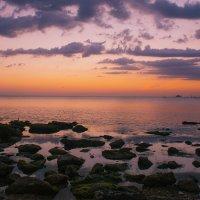 утро на море :: Эдуард Тищенко