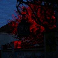 Красный свет :: youry