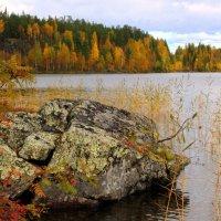 На озере осень. :: Галина Полина