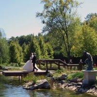 Ах,эта свадьба :: Наталья Джикидзе (Берёзина)