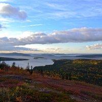 Осень на Лысой горе :: Ольга