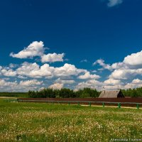 Сельский пейзаж :: Александр Горбунов