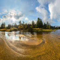 Золотой пляж Финского залива :: Фёдор. Лашков