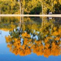 Осенние отражения :: Сергей Добрыднев