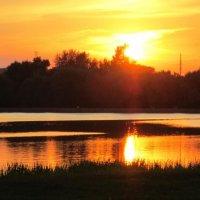 На закате :: Дмитрий Никитин
