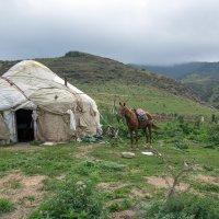 В горах Казахстана :: Евгений Мергалиев