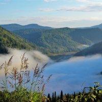 За туманом :: Сергей Чиняев