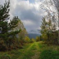 Сентябрь в Саянах :: Евгений Герасименко