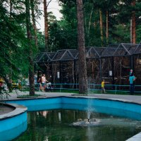 Фонтан в зоопарке :: Света Кондрашова