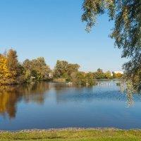 Осень на Разливе 7 :: Виталий